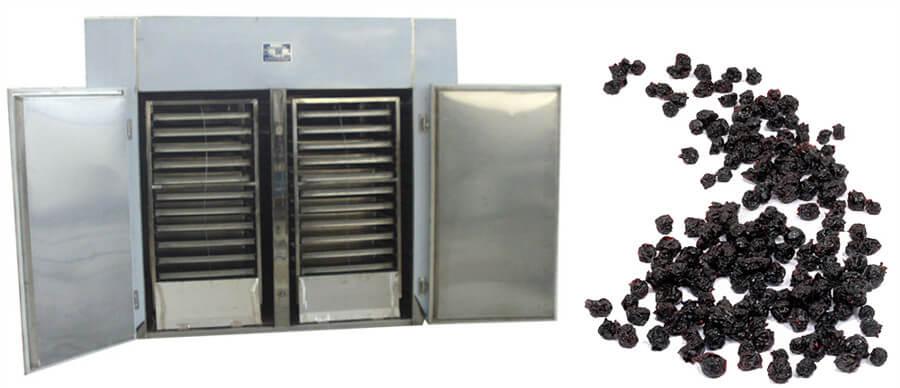 Industrial blueberry dryer