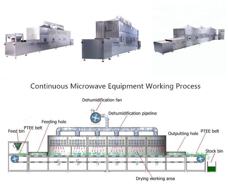 Microwave Food Drying Machine Introduction