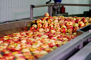 apple washing process