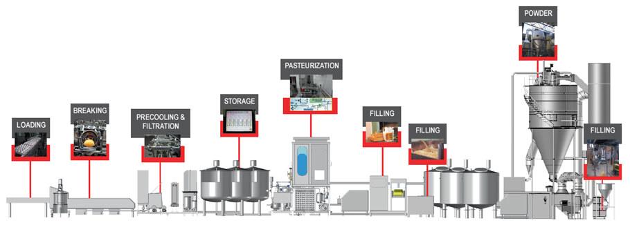 egg powder manufacturing process