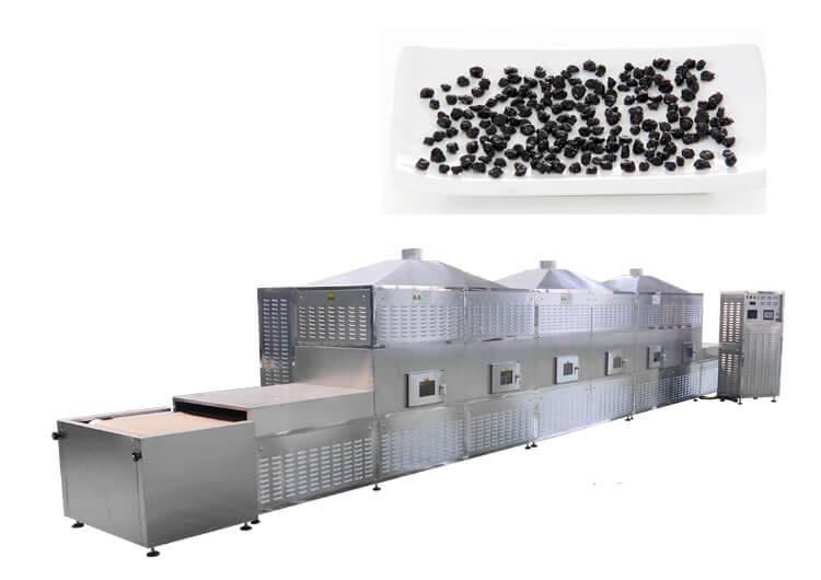 microwave blueberries dryer machine