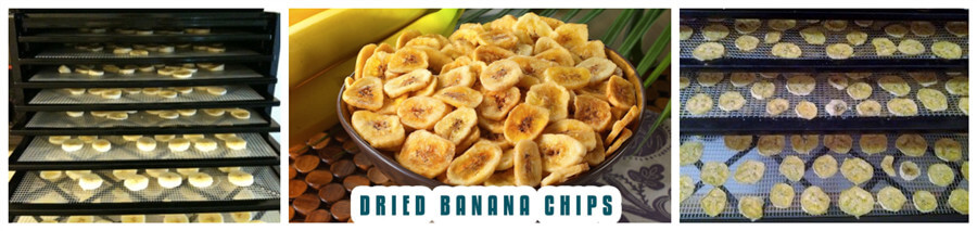 sliced banana drying in tray type hot air circulation dryer